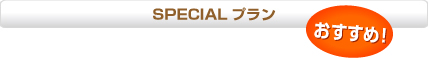 SPECIAL プラン